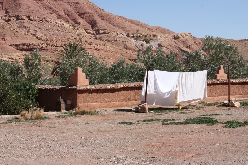 TAMDAKHT : accueil au camping Defat Kasbah (Z6) Img_2632