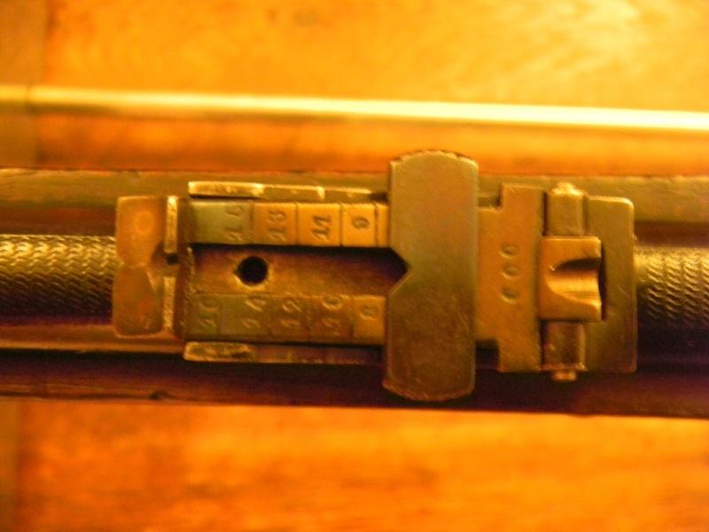carabine martini henry inconnue en calibre 8mm Dscn3219