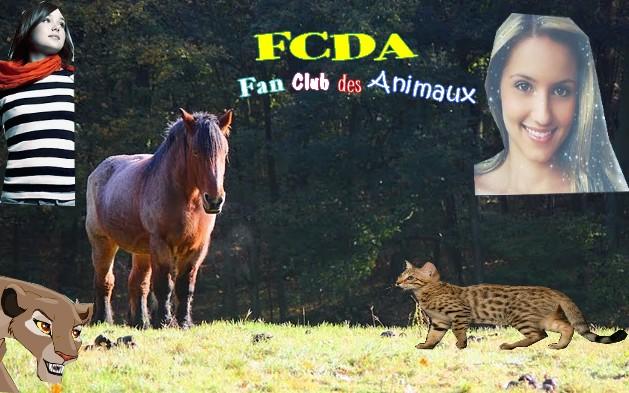 Le FCDA Gonerp10