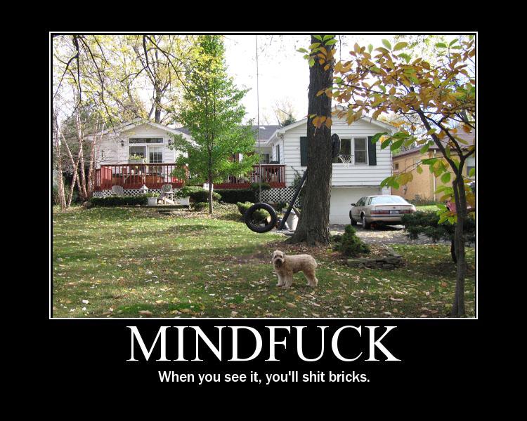 Mindfuck Mindfu10