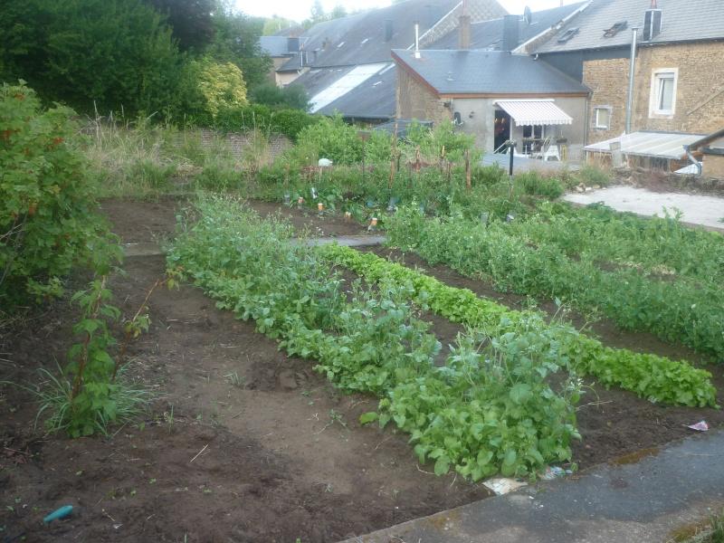 Comment enlever les pesticides des fruits et légumes Potage10
