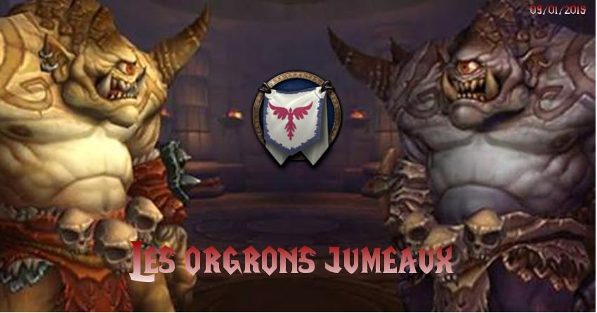 Les Jumeaux Orgrons Orgron10