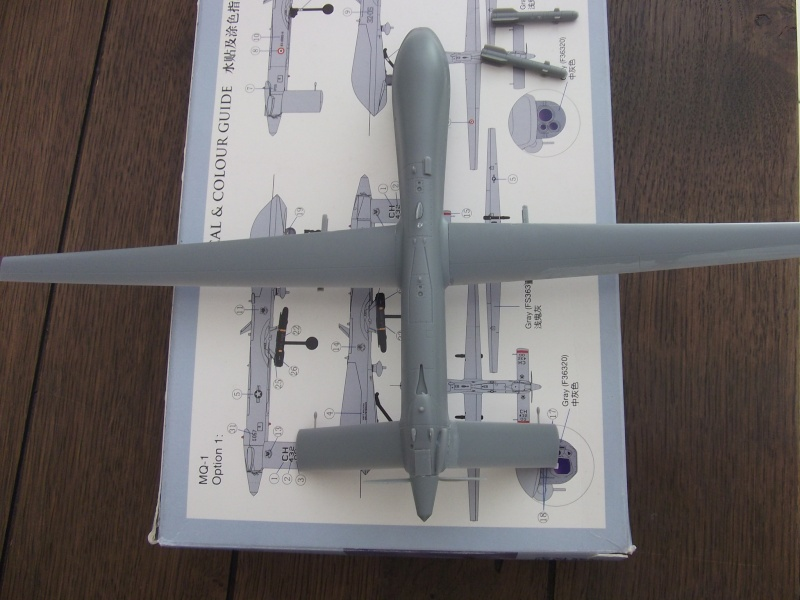 Drone RQ-1 Predator Dscf0313