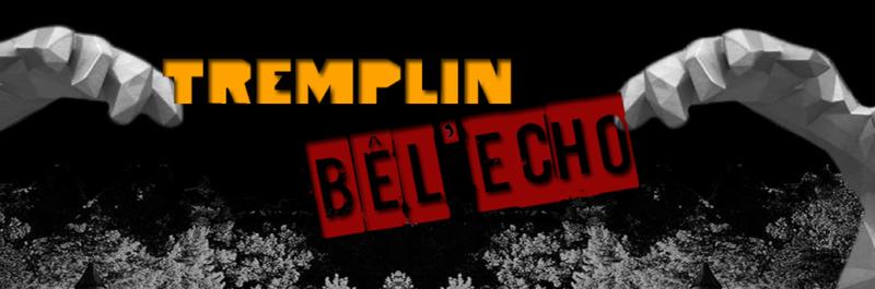 Tremplin Musical Bêl'écho  Captur10