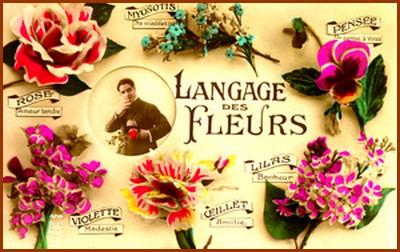 Le langage des fleurs… 6a00d810