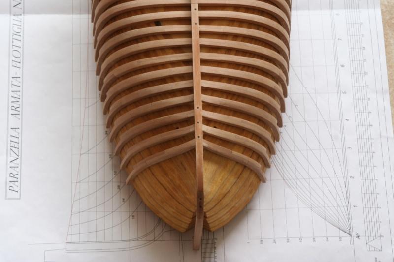 Parancelle canonnière  A_10910