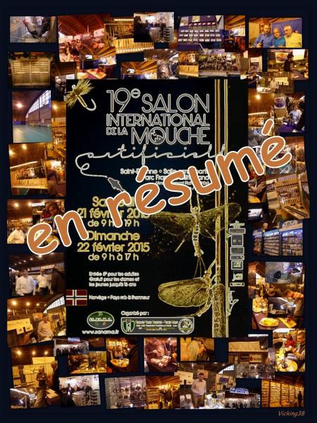 SALON DE LA MOUCHE DE ST ETIENNE 2015 (RÉSUMÉ) . . 0110