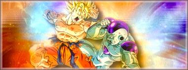 Raf création - Page 4 Goku_f12