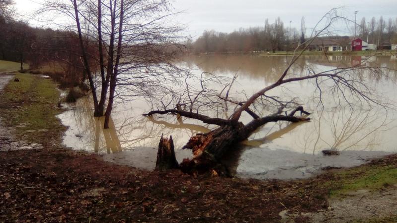 Lac inondé  Img_2019