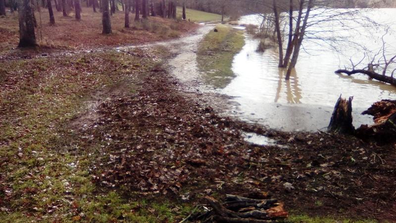 Lac inondé  Img_2020