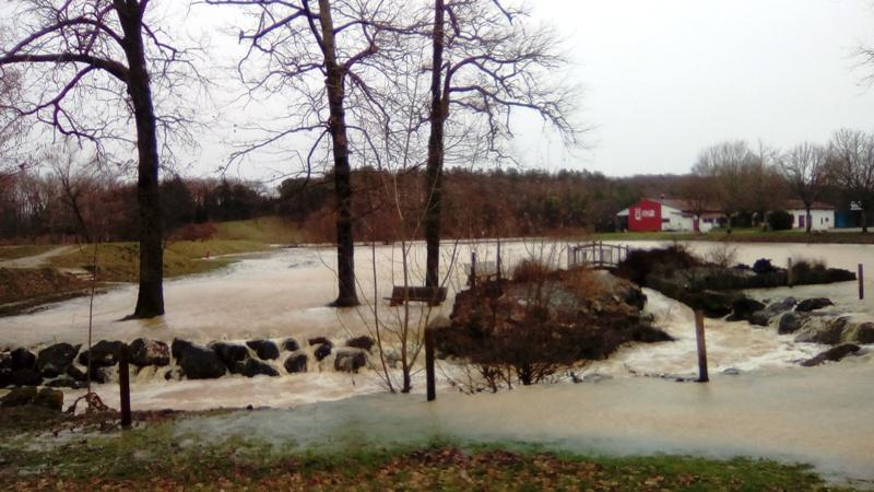 Lac inondé  Img_2027