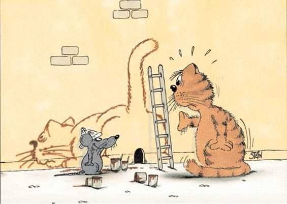 Chasse aux souris 15da9310
