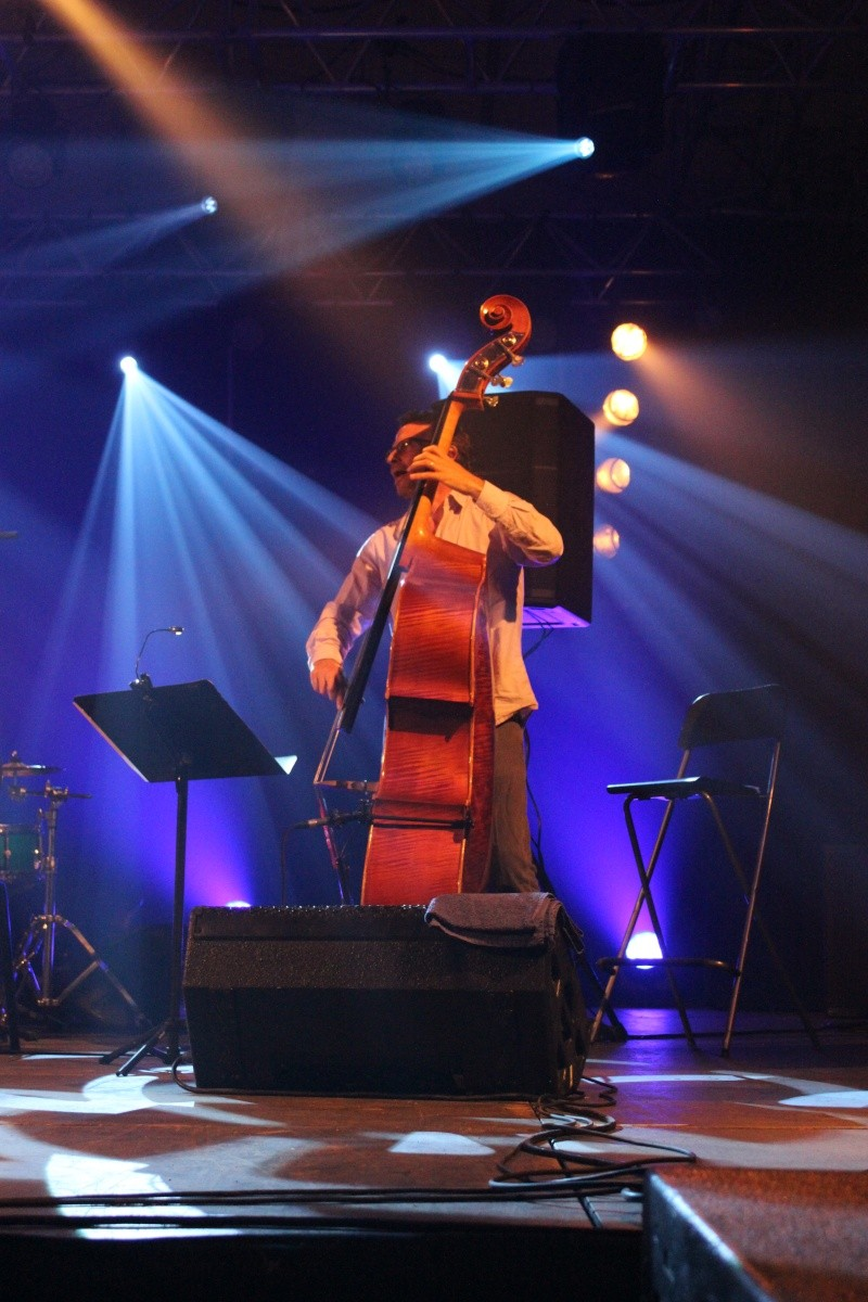 Wolfi-Jazz à Wolfisheim du 26 au 30 juin 2013 Img_0718