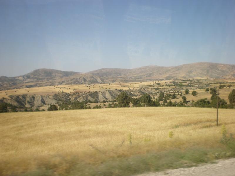 Анталия. Турция - Страница 2 P6270113