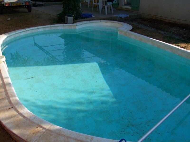 Conseil pour remise en route d'une piscine laissée à l'abandon - Page 2 100_0410