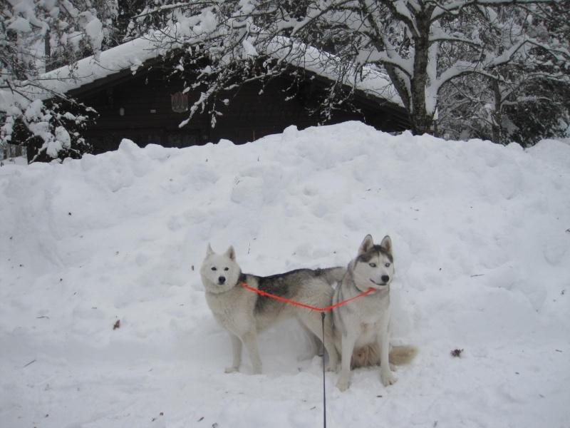 Saskia et Jiro, suite - Page 4 129