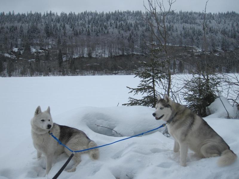 Saskia et Jiro, suite - Page 5 143