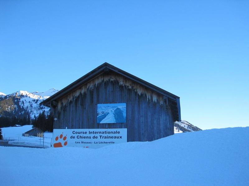 Course internationale de traîneaux à Chiens - Les Mosses - Suisse Img_8310