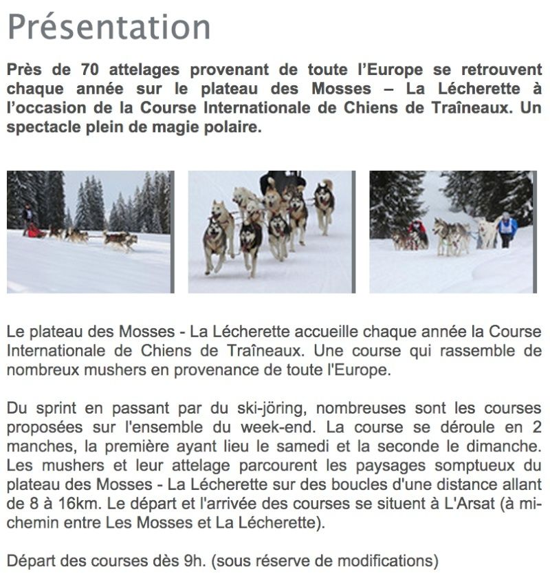 Course internationale de traîneaux à Chiens - Les Mosses - Suisse Prysen10