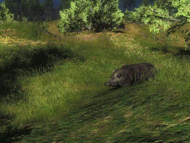 The Hunter 15012512