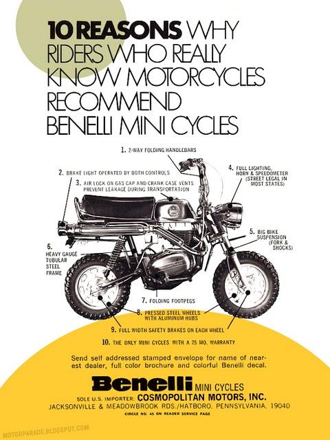 culture Benelli 20101210