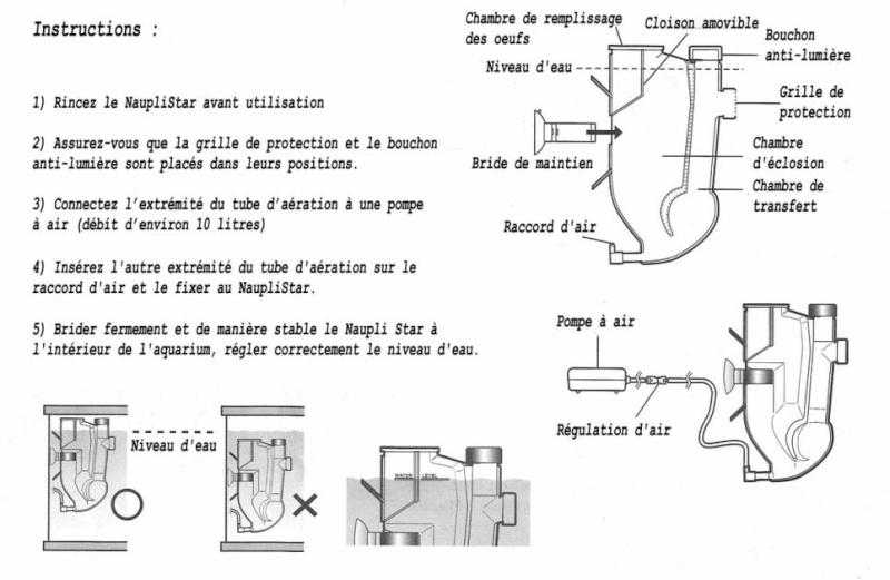 Eclosoir de competition ^^ (nauplistar) - Page 3 310