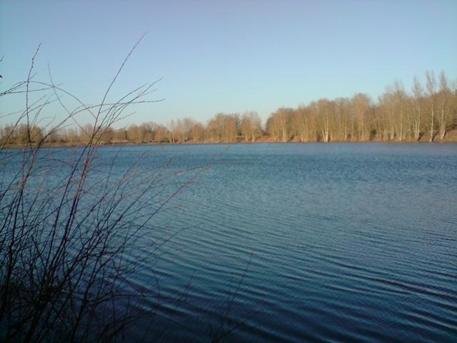 recherche d étangs du coté du loiret. P2612014