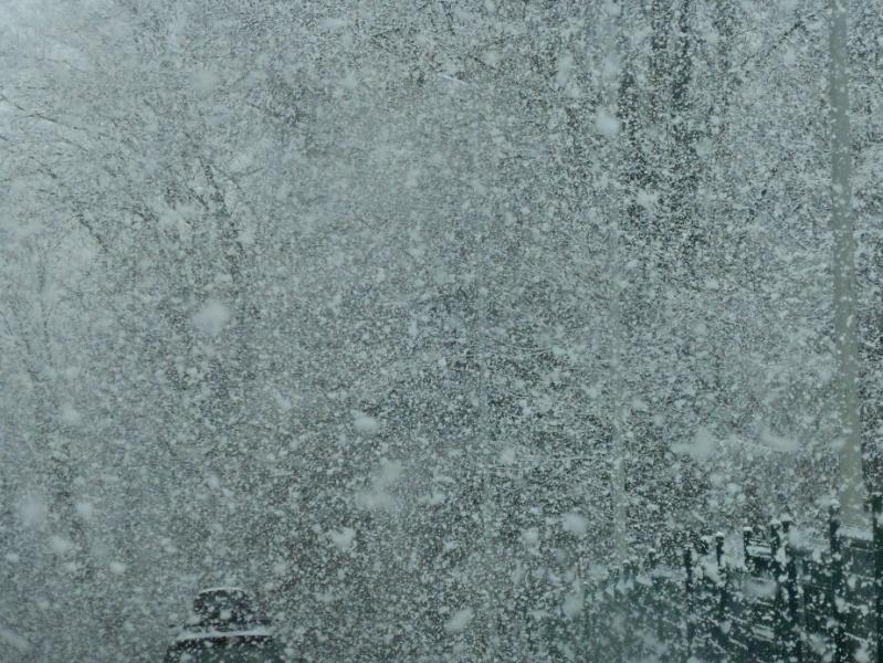 Le temps de ce week end... encore de la neige ! 01211