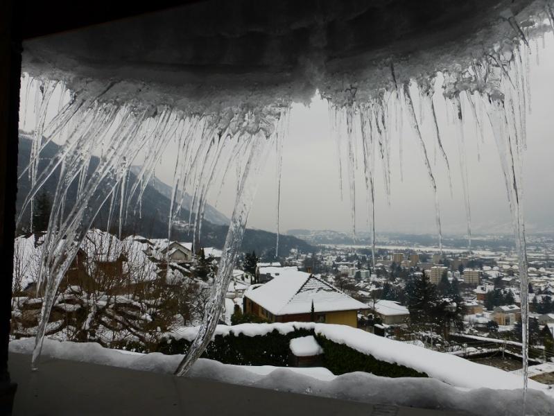 Après la neige... (ajout de photo) 03910