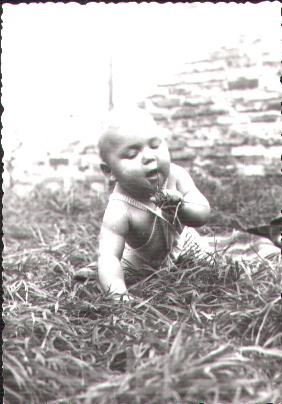 Bilder für die lieben Dementen - Seite 2 Grasfr10