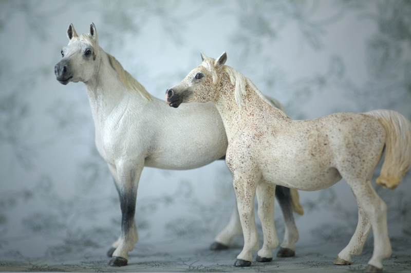 Arabian mare in foal (repainted) and other horses by Anna Family10