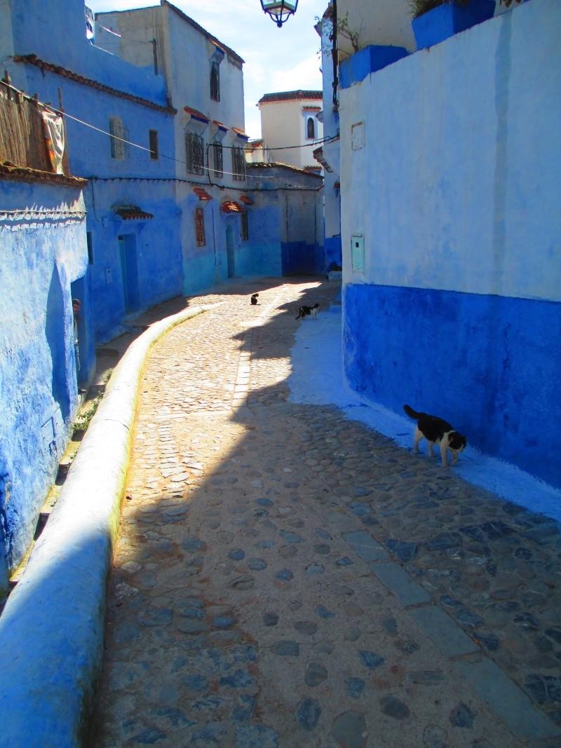 Maroc Che410