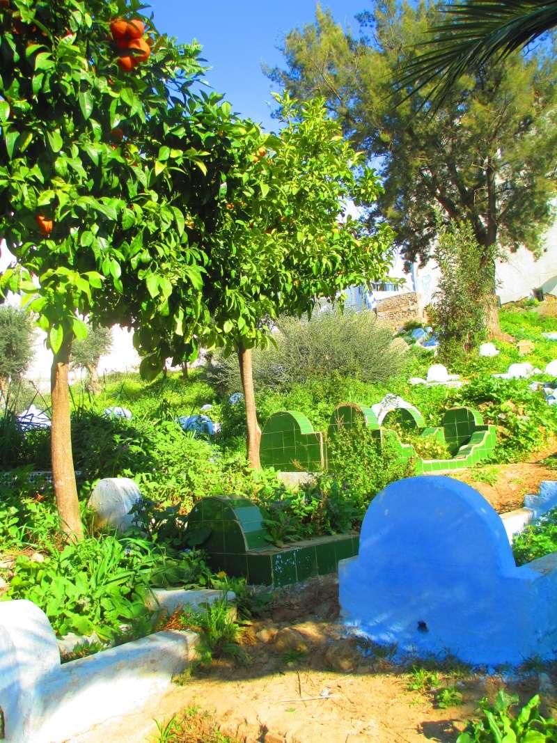 Maroc Img_2410