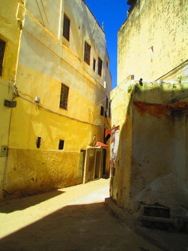Maroc - Page 2 Meknes11