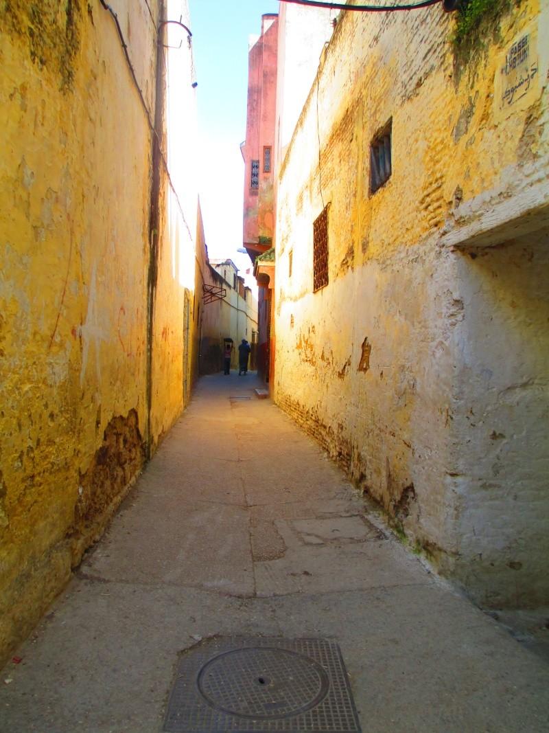 Maroc - Page 2 Meknes12
