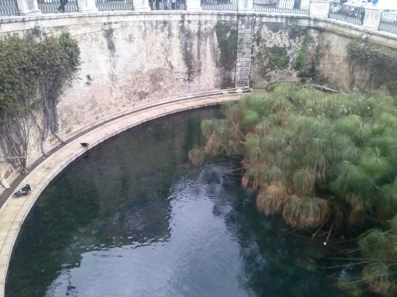 Viaggio in Sicilia Cam05310