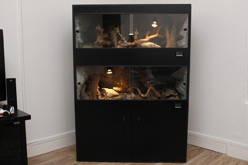 Terrarium pour gecko léo 22001410