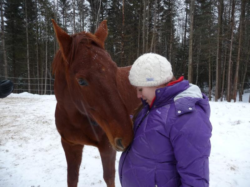 Mes amis les chevaux P1090714