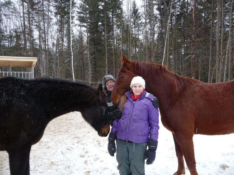 Mes amis les chevaux P1090715
