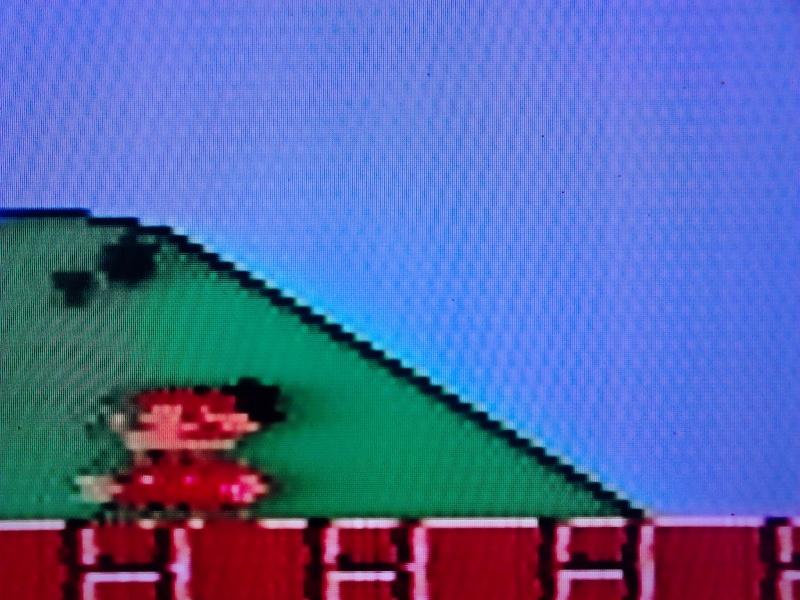 problème d'affichage NES Dsc_0111