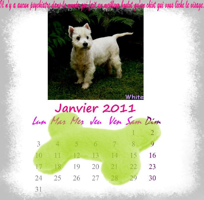 calendrier ! Janvie10