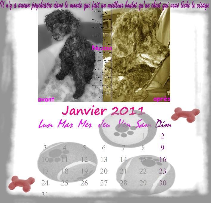 calendrier ! - Page 2 Janvie11