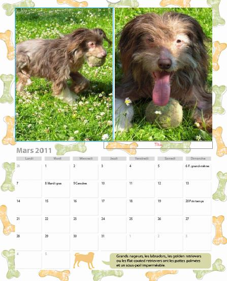 calendrier ! - Page 3 Mars10