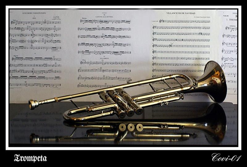 Bodegón musical 8_210