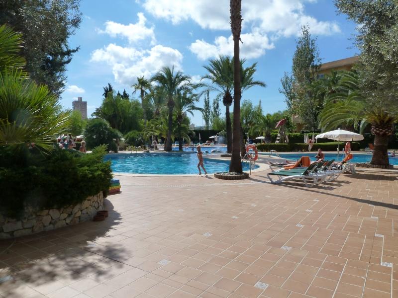 Viva Palma Nova Hotel 2012 P1010613