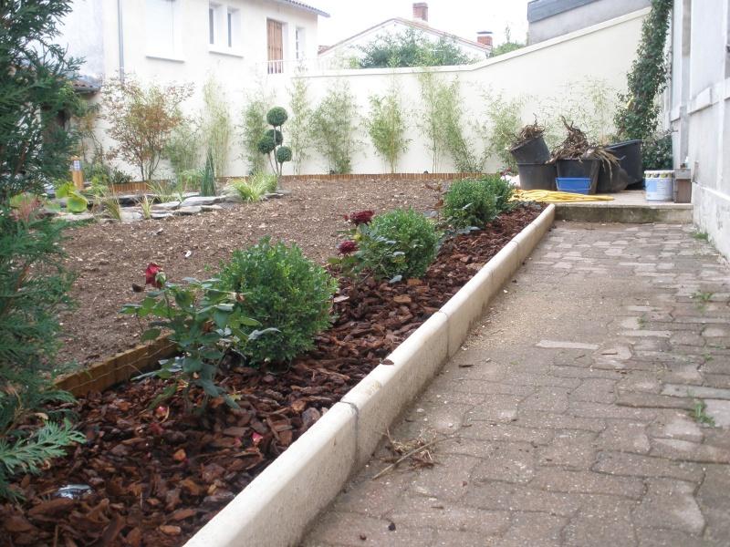 Cr ation bassin et jardin for Creation bassin de jardin