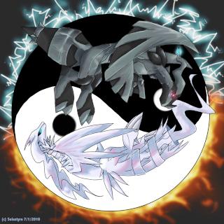 Reshiram vs Zekrom Yin_ya10