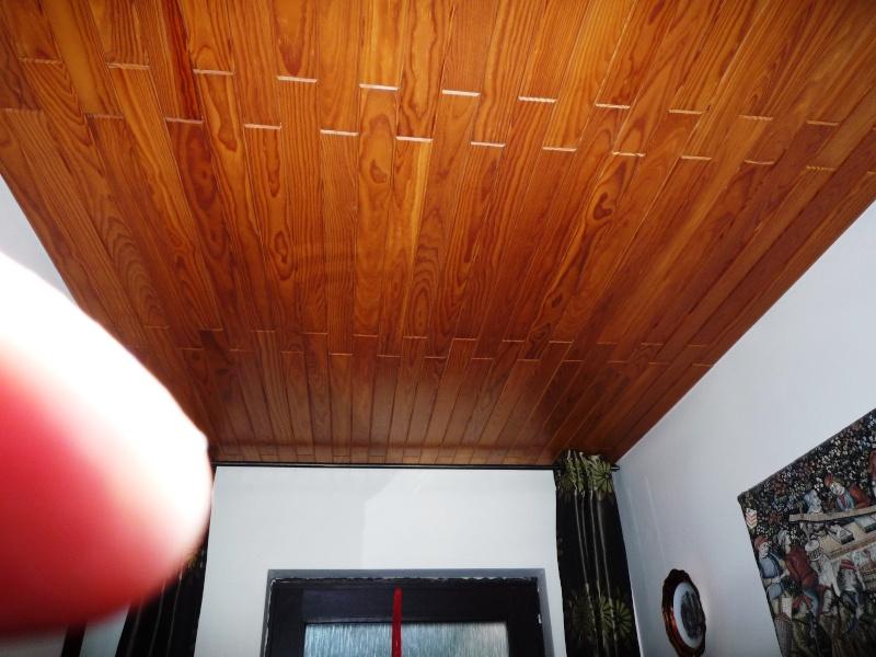 Maison préfabriqué transformée en traditionnelle. - Page 4 Hall_910
