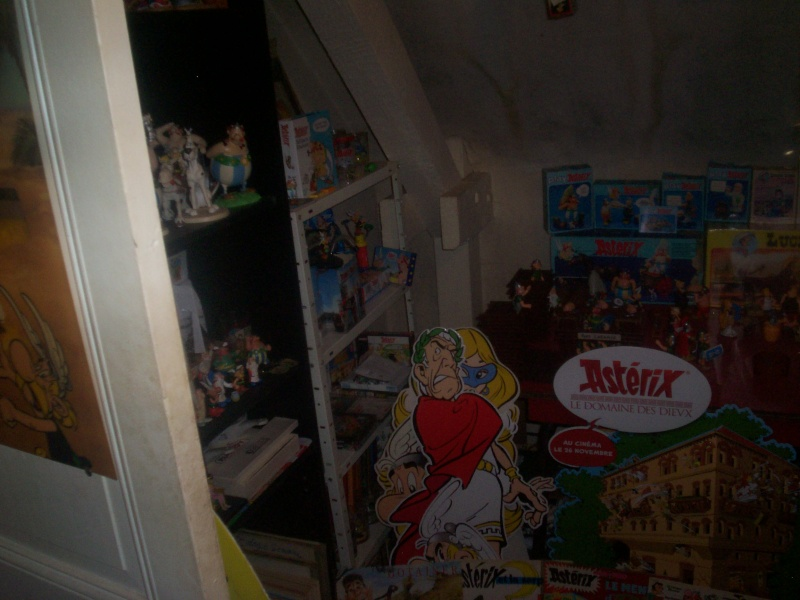 collection asterix de mas08ter - Page 6 100_5137