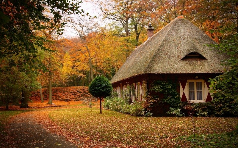 Images Automne House-10